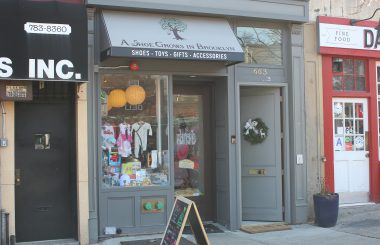 663 Vanderbilt - Retail for Lease - TerraCRG Brooklyn Commercial Real Estate - Peter Schubert - Ofer Cohen - Abbie Cheng